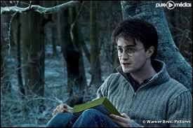 Pourquoi Harry Potter est-il né un 31 juillet ?