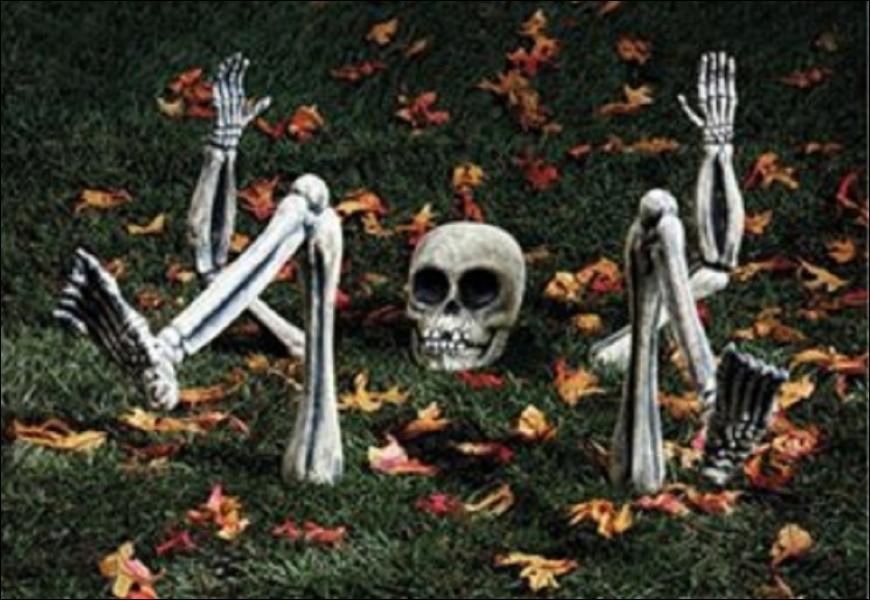 Quelle est en moyenne la masse du squelette chez l'homme et la femme ?