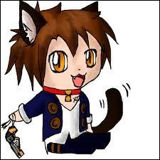 Qui est ce dangereux chat ?