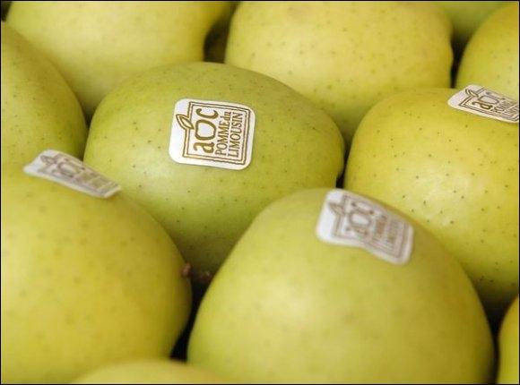 La pomme du Limousin est cultivée sur quatre départements comprenant une centaine de communes. Sélectionnez la réponse.