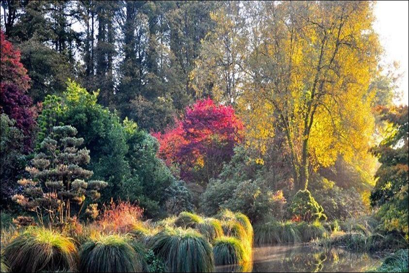 Une promenade dans un magnifique parc botanique où les ors et les pourpres enchantent l'œil et l'âme : le parc botanique de La Foltière, devrait vous plaire. Où est-il situé ?
