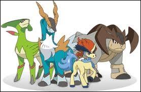 Qui est le petit cheval devant le groupe ?
