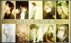 Qui est le maknae de Super Junior ?