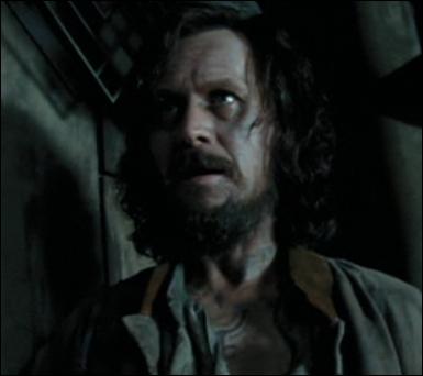 À la fin, avec qui Sirius part-il ?