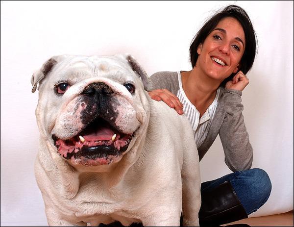 Le chien sur cette photo est :