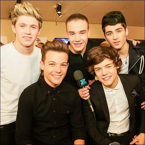 Les One Direction sont 4 Irlandais et 1 Anglais.