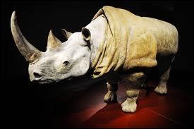 Rhinocéros  est une pièce caractéristique du théâtre de l'absurde. Qui en est l'auteur ?