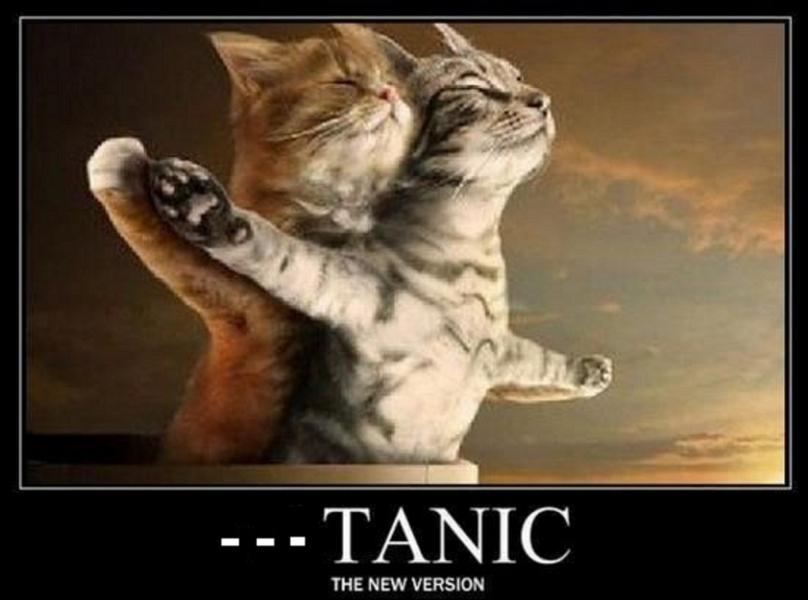 Quel film n'ayant pas pour acteurs Leonardo DiNaufrageo et Kate Windsurf vous inspire cette image ?