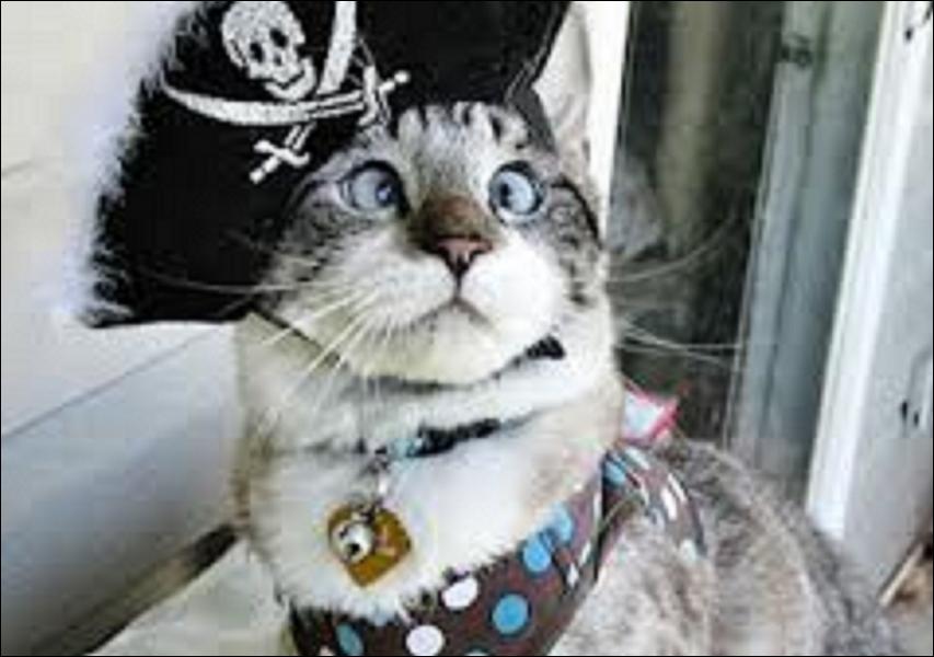 Parmi ces quatre célèbres pirates, lequel a réellement existé ?