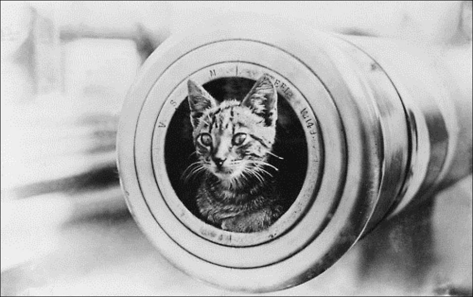 La Grosse Bertha (pas sur l'image) était un canon utilisé pour le bombardement de Paris en 1918. Quelle était sa portée de tir ?