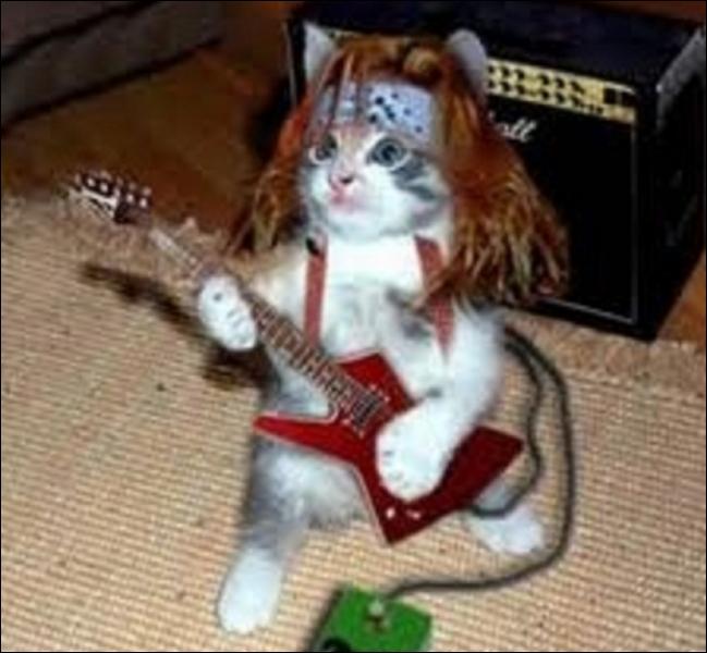 Quel groupe de rock emmené par Freddie Mercury a connu un énorme succès avec  Crazy Little Thing Called Love  et  Another One Bites the Dust  ?