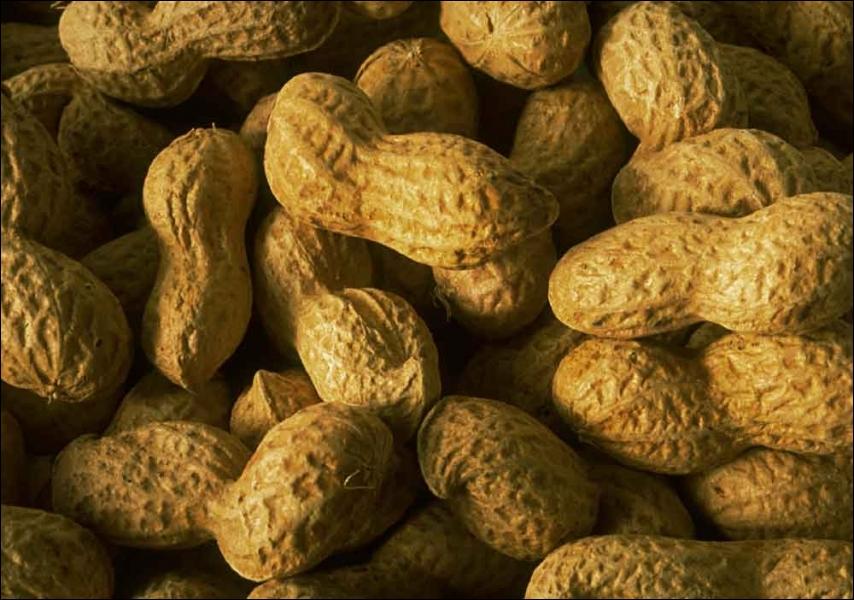Courez immédiatement dans votre cuisine ! Y êtes-vous ? Parfait, maintenant, sans gestes brusques, vérifiez si vous avez des cacahuètes. Si oui, alors vous êtes en danger ! Pourquoi ?