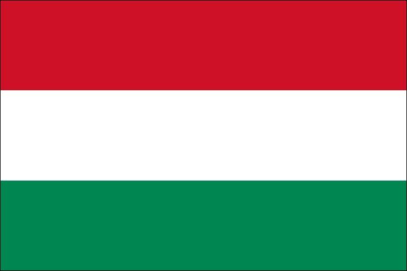 De quel pays les Magyars sont-ils les habitants ?