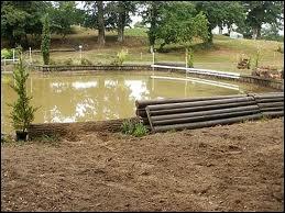 Comment s'appelle cet d'obstacle ?