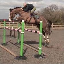 Equitation : le saut d'obstacles