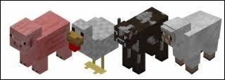 Que mangent les moutons et les vaches ?