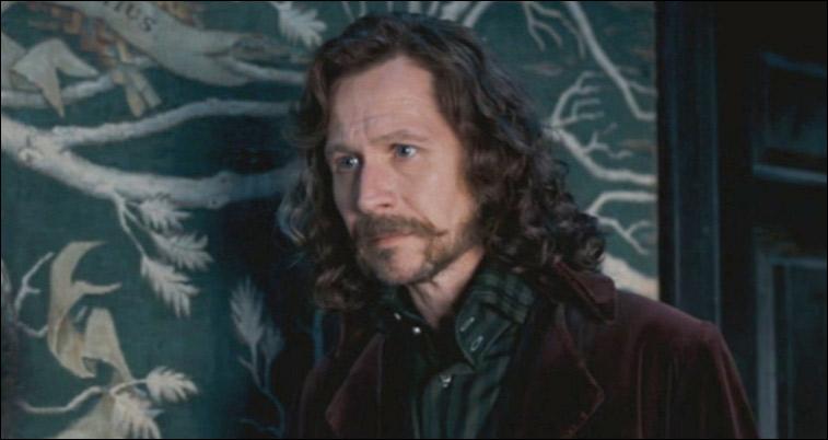 Qui d'autre que les Weasley, Alphard et Sirius a été effacé de la généalogie ?