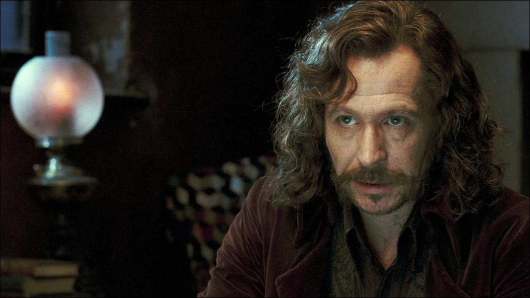 L'elfe de maison des Black adore-t-il Sirius ?