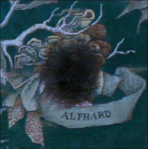 Qu'a fait l'oncle Alphard de Sirius quand ce dernier s'est enfui de chez lui à l'âge de 16 ans ?