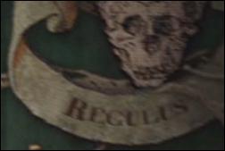 Le petit frère de Sirius, Regulus, s'est enrôlé parmi les Mangemorts. Par la suite, voulant vaincre Voldemort, il meurt en essayant de récupérer un horcruxe qu'il arrive à faire mettre en sûreté.