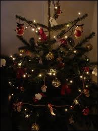 Il est temps de choisir votre sapin de Noël, lequel d'entre eux a les aiguillons qui tombent le moins ?