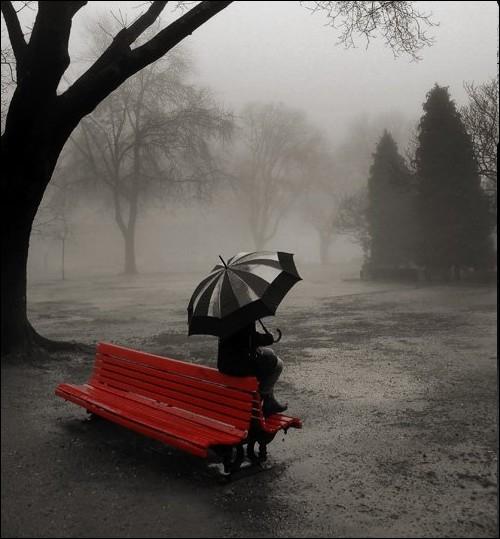 Toute la pluie tombe sur moi  chanson de Sacha Distel est une adaptation de  Raindrops keep falling on my head , oscar de la meilleur musique de quel film ?