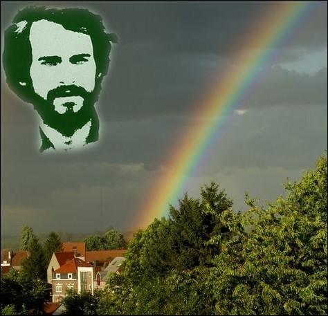 Complétez le refrain de cette chanson de Michel Fugain :   Comme un soleil/ Comme une éclaircie/ Comme une ... . . que l'on cueille entre les orties