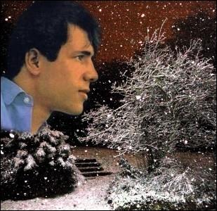 Que chantait Salvatore Adamo dans les années  sixties  ?