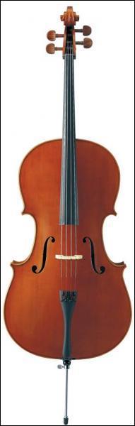Quel est cet instrument de la famille des cordes ?