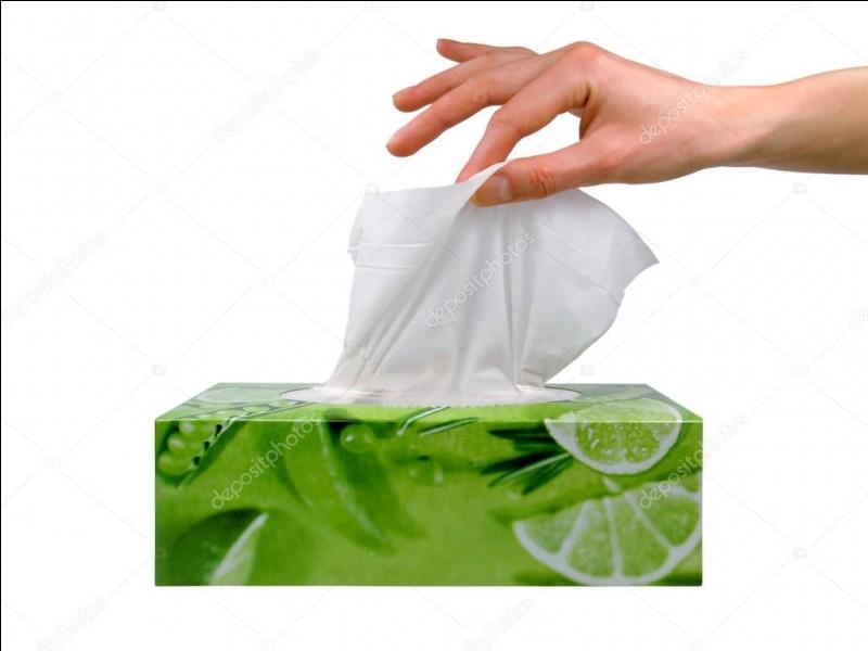 Un simple mouchoir en papier met quand même 3 mois pour disparaître :