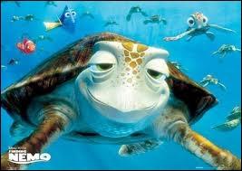 Quel est le nom de la tortue de mer dans Némo ?