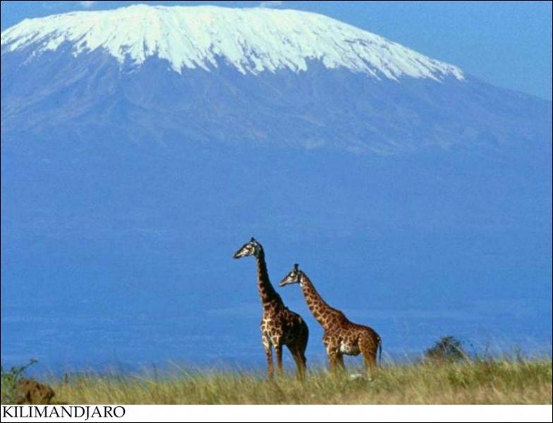 Sur quel pays se trouve le Kilimandjaro ?