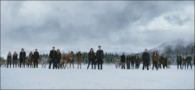 Comment les Cullen font-ils pour combattre les Volturi ?