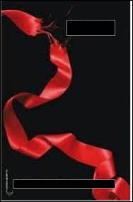 Comment s'appelle le tome 3 de  Twilight  ?