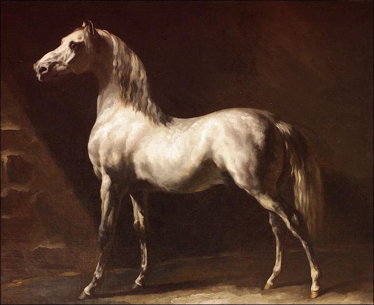 Qui a peint Cheval arabe gris et blanc ?