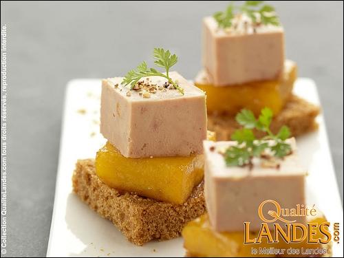 Nous commencerons pas une bouchée de foie gras des Landes ...