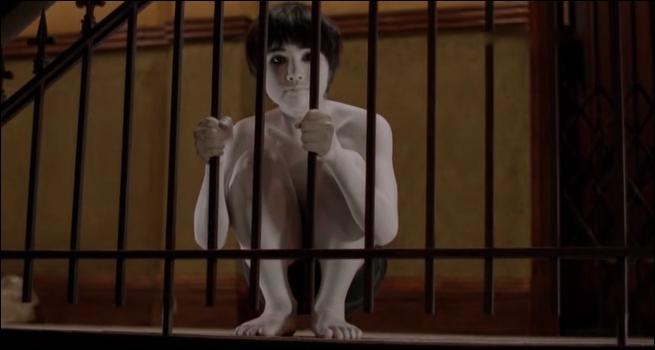 Quel est ce film d'horreurs où il y a un fantôme et sa mère qui tuent des gens ?