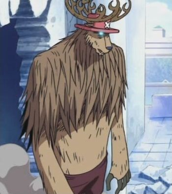 One Piece : Fruits du démon