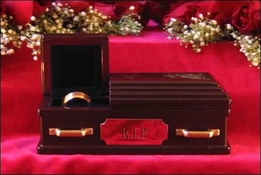 """Pour couronner le tout voici le cercueil """"Alliance"""". Une firme l'a lancé aux États-Unis, mais pourquoi ?"""