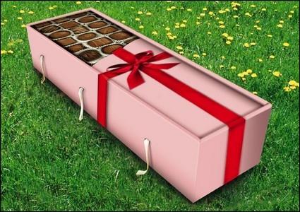 Voici le cercueil idéal pour mourir à...