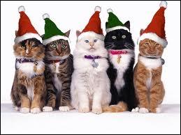Mon beau sapin  et  Jingle Bells  en sont deux ...
