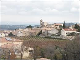 A Rochefort-du-Gard, les habitants portent le gentilé ...