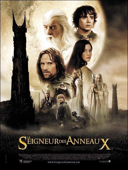 Une suite sombre, spectaculaire et féerique du   Seigneur des Anneaux   réalisée par Peter Jackson en 2002 avec Elijah Wood, Sean Astin, Viggo Mortensen, Christopher Lee ... .