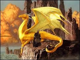 Comment s'appellent les maîtres du héros et de sa dragonne ?