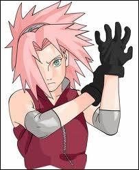 Avec qui Sakura a-t-elle effectué une mission pendant laquelle elle a croisé Naruto sur une île alors qu'il allait au Pays de la foudre ?