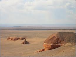Le désert de Gobi est une vaste région qui empiète sur plusieurs pays d'Asie. A vous de désigner l'intrus parmi ces trois propositions.