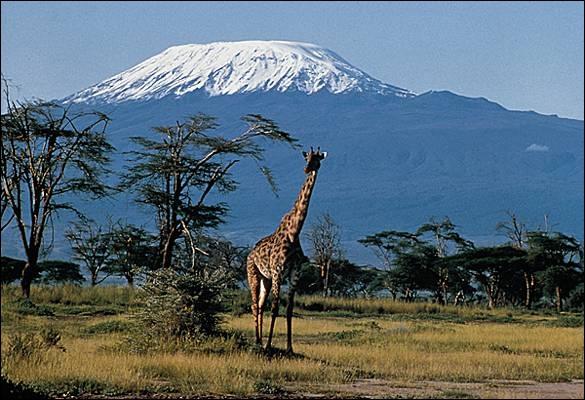 Culminant à 5 895 mètres, le Kilimandjaro (photo : le pic Uhuru, au volcan Kibo) est le plus haut sommet du continent africain. Dans quel pays le situez-vous ?