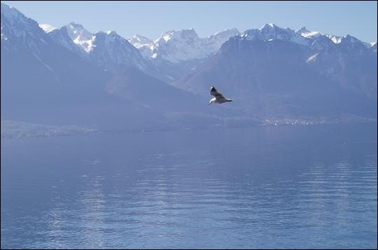 Un de ces trois lacs n'est pas un lac italo-suisse, lequel ?
