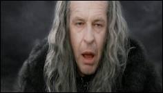 Dans 'Le retour du roi', lorsque Denethor dit aux hommes de fuir, combien de fois Gandalf le frappe-t-il avec son bâton ?