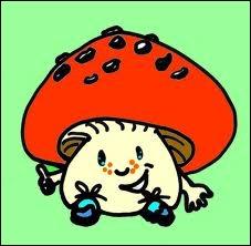 Quel est le champignon comestible sans danger d'intoxication ?